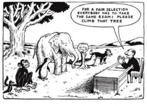 fair test, oppposition